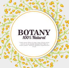 botany 100 percent natural vector illustration design