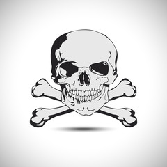 Skull with crossbones vector illustration