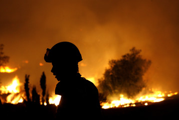 A firefighter is silhouetted in front of a forest fire in Grammatiko village northeast of Athens