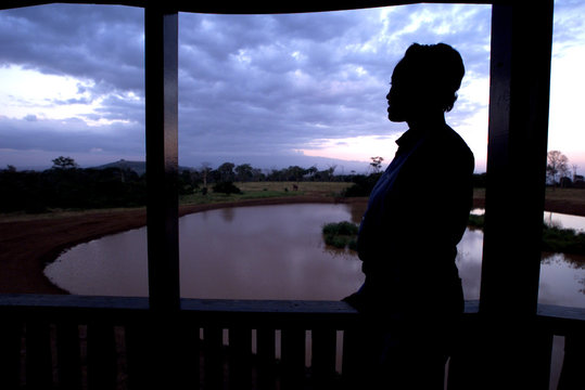 A visitor to the TreeTops Lodge looks at animals as the sun set over the Aberdare Game Reseve near N..