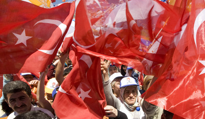 Supporters waving national flags cheer for Turkey's PM Erdogan during a rally in Antalya