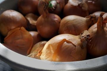 Organic brown skin onions in a ceramic bowl in natural light