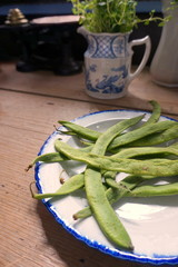 Organic green runner beans on a china plate in traditional kitchen