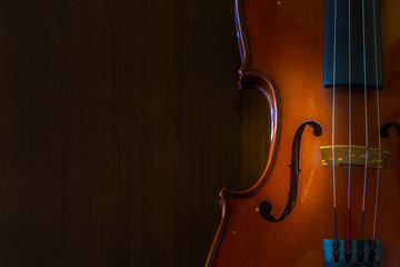 Violin music instrument of orchestra