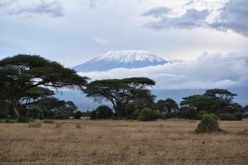 Foto op Canvas Afrika Kenia Safari