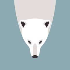 polar bear vector illustration style Flat