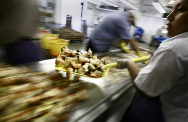 Worker carries stone crab claws at a factory in Marathon in the Florida Keys