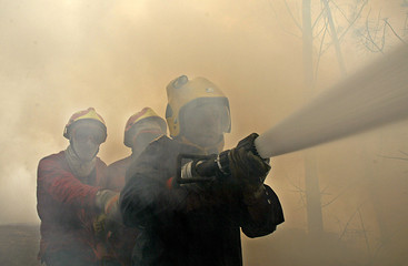 Firefighters try to extinguish forest fire in Pedrogao Grande in Portugal.