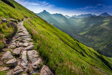 Wall Mural - Footpath in the Tatras Mountains at sunrise, Poland, Europe