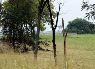 The Blue Grass airport control tower can be seen in the background of the Comair flight 5191crash site through broken trees in Lexington