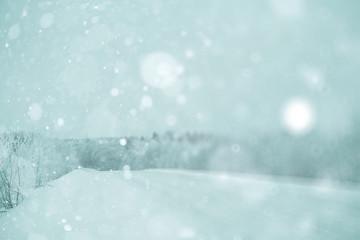 Winter forest blurred background snow landscape