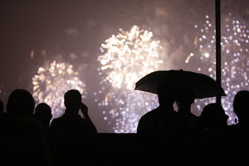Spectators watch as fireworks light up the sky above Manhattan in New York during Independence Day celebrations