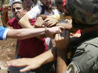 International peace activist and Palestinians scuffle with an Israeli border policeman during a ...
