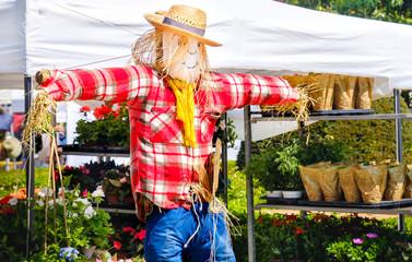 smiling scarecrow peasant fair