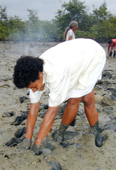 ECUADORAN WOMAN PICKS SHELLS FROM MUD.