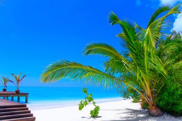 Dreamscape Escape On Maldives