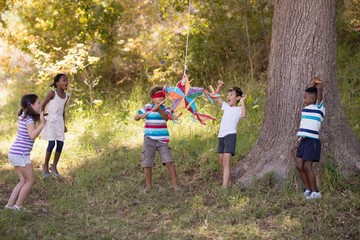 Friends cheering for blindfolded boy hitting pinata