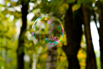 A soap bubble with beautiful reflections flies through the air.