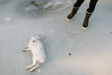 boy standing by rabbit he shot