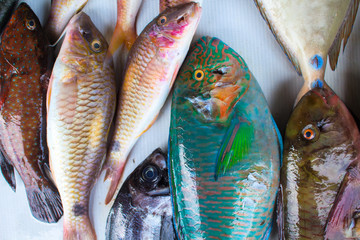 Tropical sea fishes on market table. Seafood local market store.