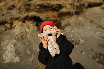 Boy holding driftwood on beach