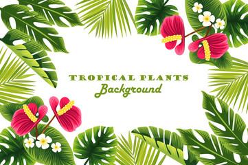 Tropical plants. frame. background. vector illustration