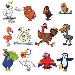Birds Cartoon Set