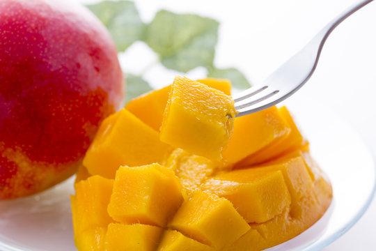 アップルマンゴー Mango
