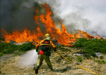 A firefighter tries to extinguish a forest fire in A Lama