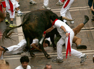 A FIGHTING BULL TURNS BACK AND TRIES TO TOSS RUNNERS ON ESTAFETA STREETDURING THE 7TH BULL RUN OF ...