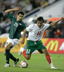 Bulgaria's Telkiyski challenges Slovenia's Ilich for the ball during their Euro 2008 Group G qualifying match in Sofia