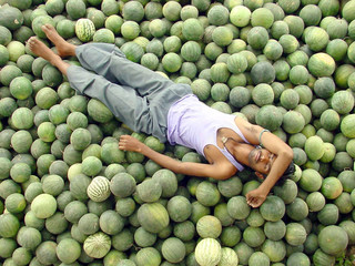 WATERMELON SELLER RESTS ON HIS STOCK DURING A HOT DAY ON IN BHOPAL.