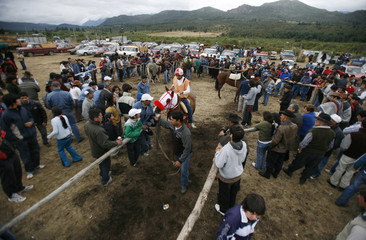 "Residents look at horses before a race during the ""Fiesta del Lenador"" in Mallin Ahogado"