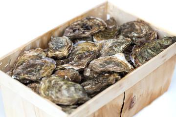 Bouriche d'huîtres