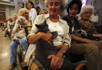 Owners and their pets attend a mass to commemorate the feast of Saint Francis of Assisi and World Animal Day in Nice