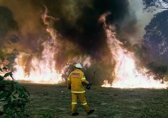 BUSH FIREFIGHTER MONITORS A BLAZE IN SYDNEY SUBURB CEMETERY.