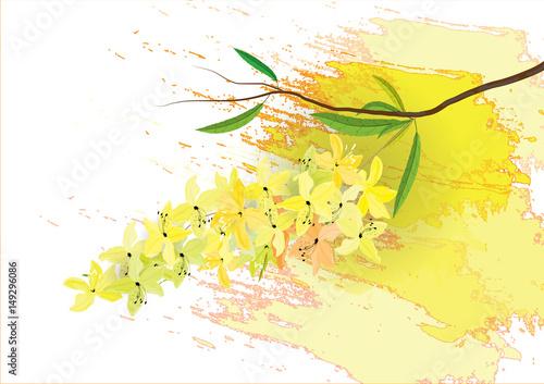 fbd6f317a05 Golden shower flowers or Ratchaphruek