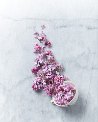An arrangement of lilac flowers and a vintage tea cup