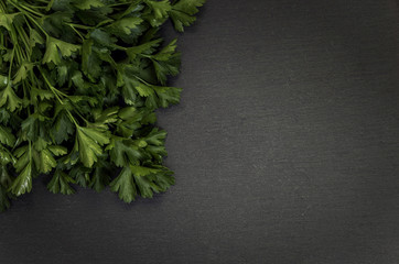 parsley on grey stone background
