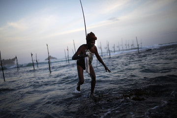 A Sri Lankan stilt fisherman leaves with his catch in Ahangama