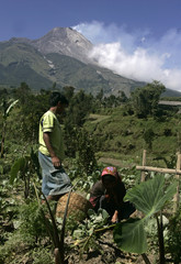 Farmers work at their farm with Mount Merapi volcano in the background in Selo village near the Indonesian city of Boyolali