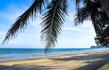 Idyllic beach in Thailand with palm leaves