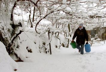 A PALESTINIAN FARMER WALKS UNDER GRAPE TREES COVERD BY SNOW IN HEBRON.