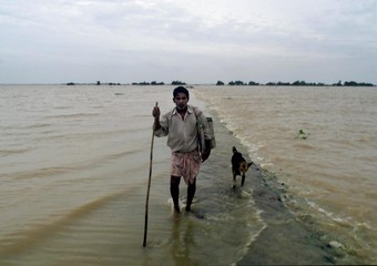 B. MALIK A VILLAGER FROM BHAGWANPOR WALKS WITH HIS DOG THROUGH AFLOODED ROAD.