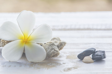 Tiare flowers,corals and stones on white wood,Sand background.