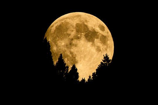 Moon Rising Over Bald Mountain in Sun Valley, Idaho