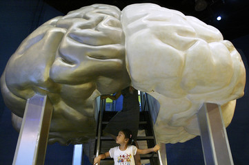 A CHINESE GIRL EXPLORES A HUGE MODEL OF THE BRAIN IN SHANGHAI.