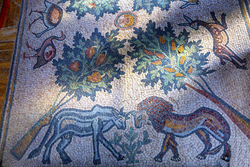Animal Tree Mosaic John Baptist Greek Orthodox Church Jesus Baptism Site Bethany Beyond Jordan
