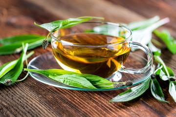 Tee aus Spitzwegerich - Wildkräuter - Heilkraut - Homöopathie