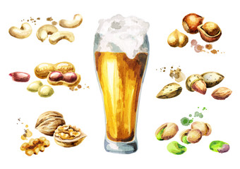 Beer and nuts snacks set with pistachio, peanuts, almonds, walnuts, cashews and hazelnuts. Watercolor